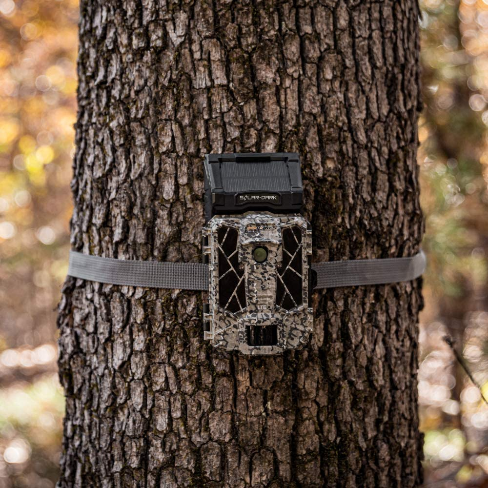 best camera for photography spyppoint solar dark by tyler riddell
