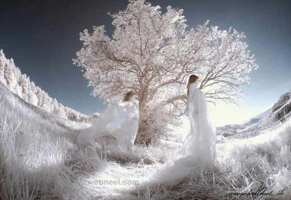 best infrared photography by hellmet