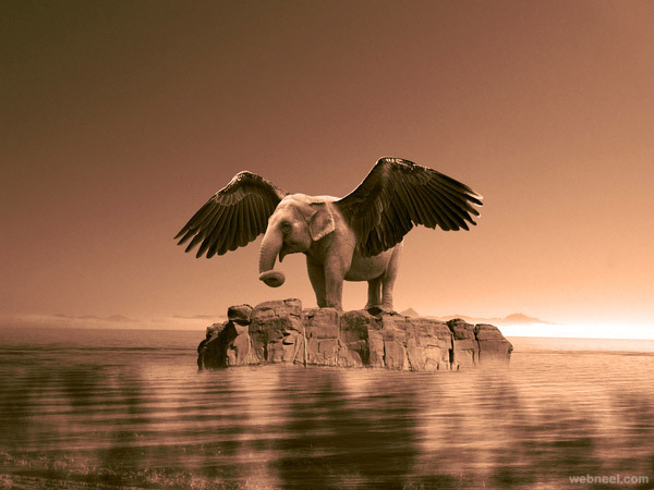 best photo manipulation by jelani dozier