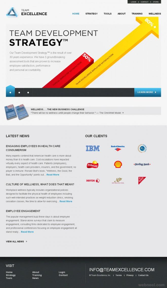 team excellence corporate website design