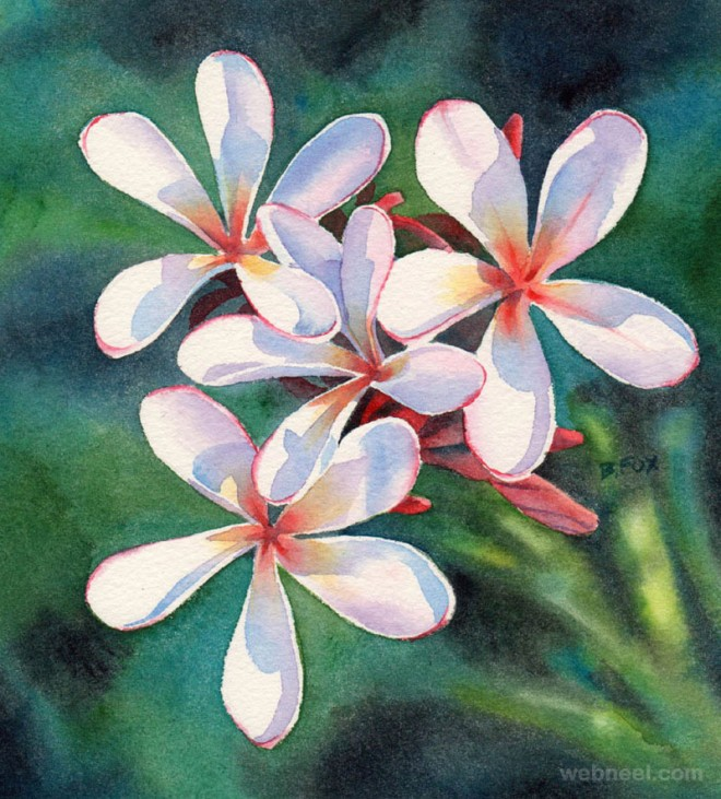 watercolor painting flower by frangipani