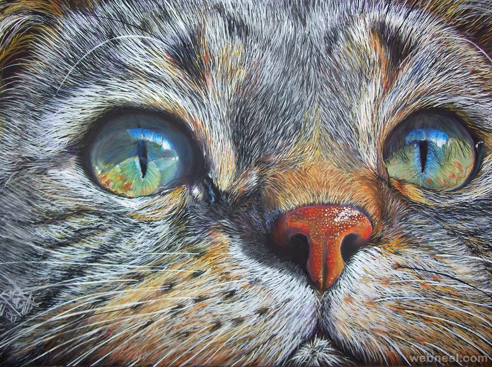 cat color pencil drawing