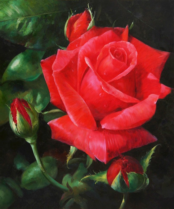 red rose flower painting