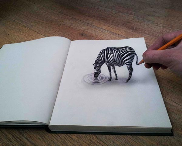 zeebra 3d pencil drawings