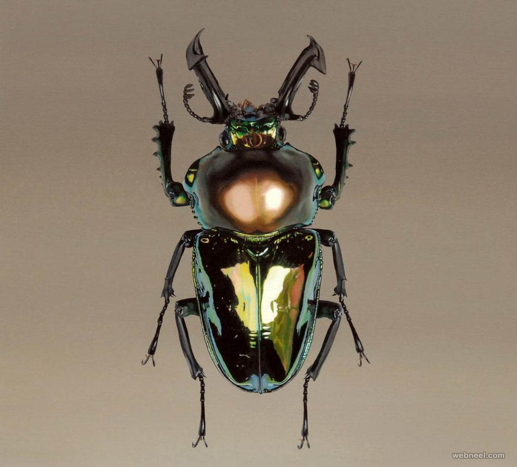 beetle hyper realistic painting