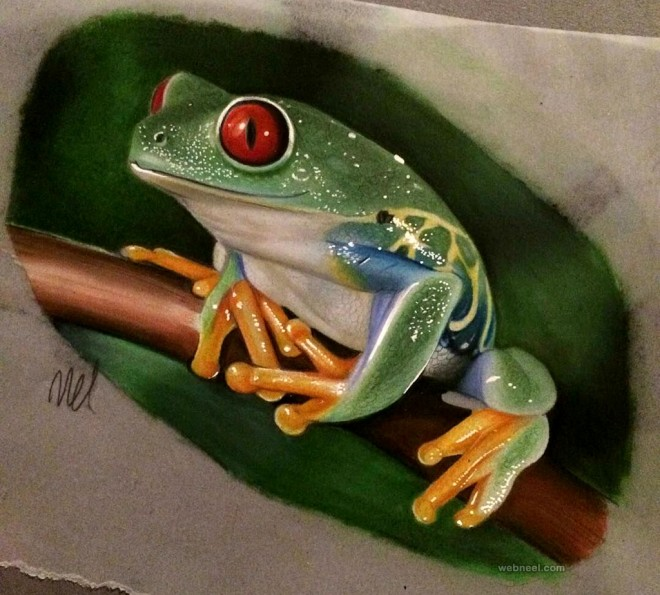 color pencil drawing by melissa scott