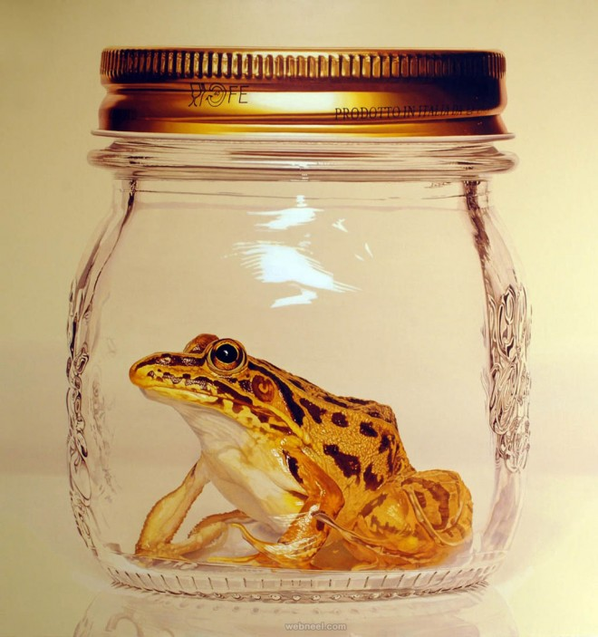 frog in mason jar hyper realistic painting by young sung kim