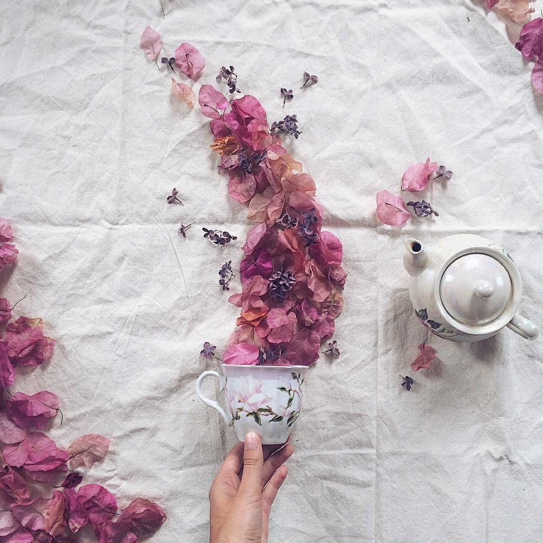 still life flower photo