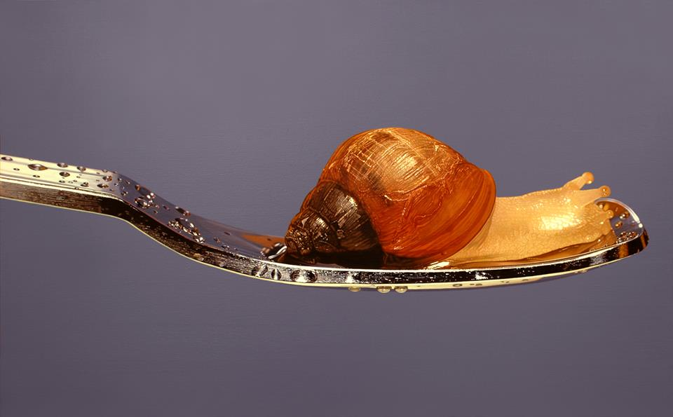 hyper realistic paintings snail young sung kim