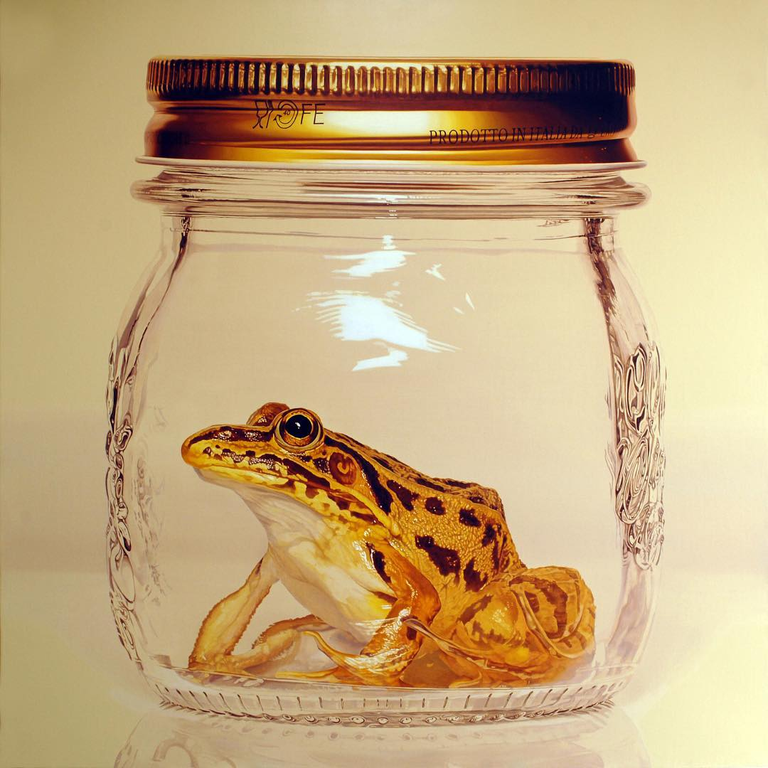 hyper realistic paintings frog by young sung kim