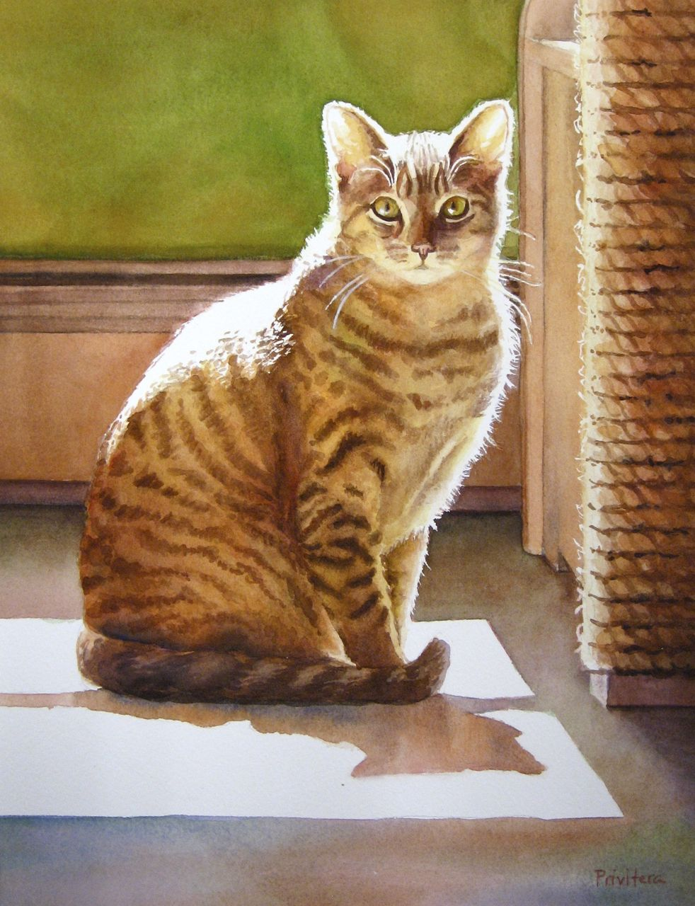 watercolor painting sunny cat by lana matich privitera