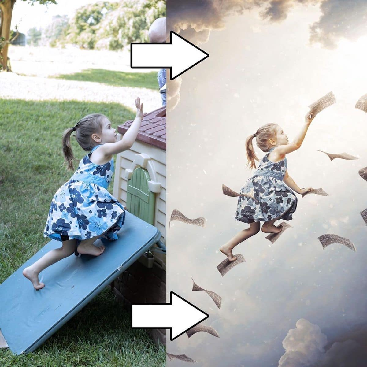 photo manipulation fly