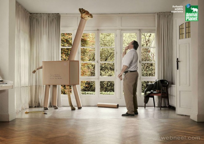 planet animal ad