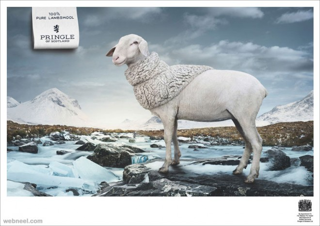 pure lambswool animal ad