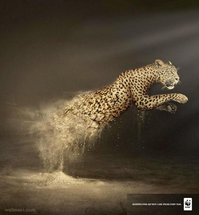 wwf leopard animal ad