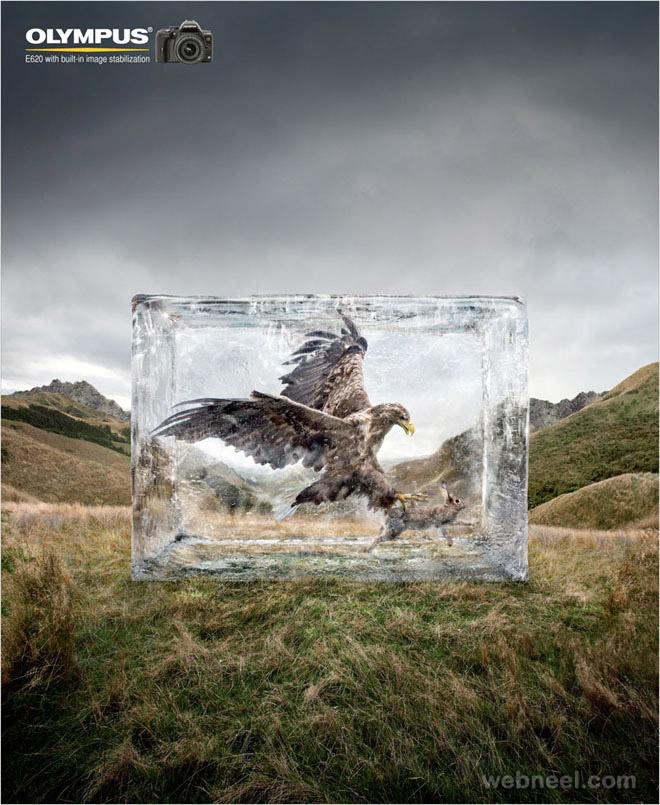 olympus animal ad