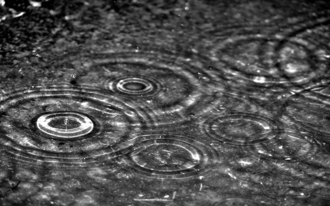 rain drops photography