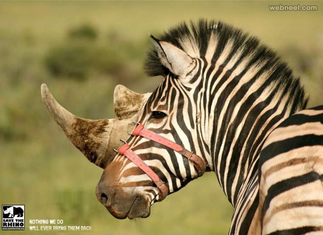 print ads rhino