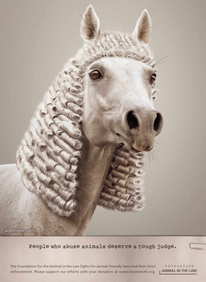 animal judge print ads
