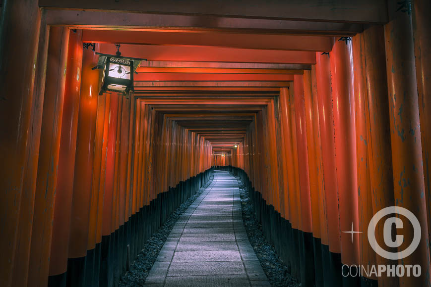 tunnel red photography