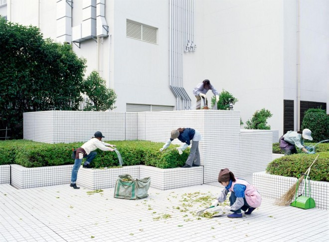 gardening lensculture street photography