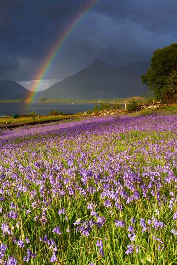 sunshine and showers scottish photographer by jeanie