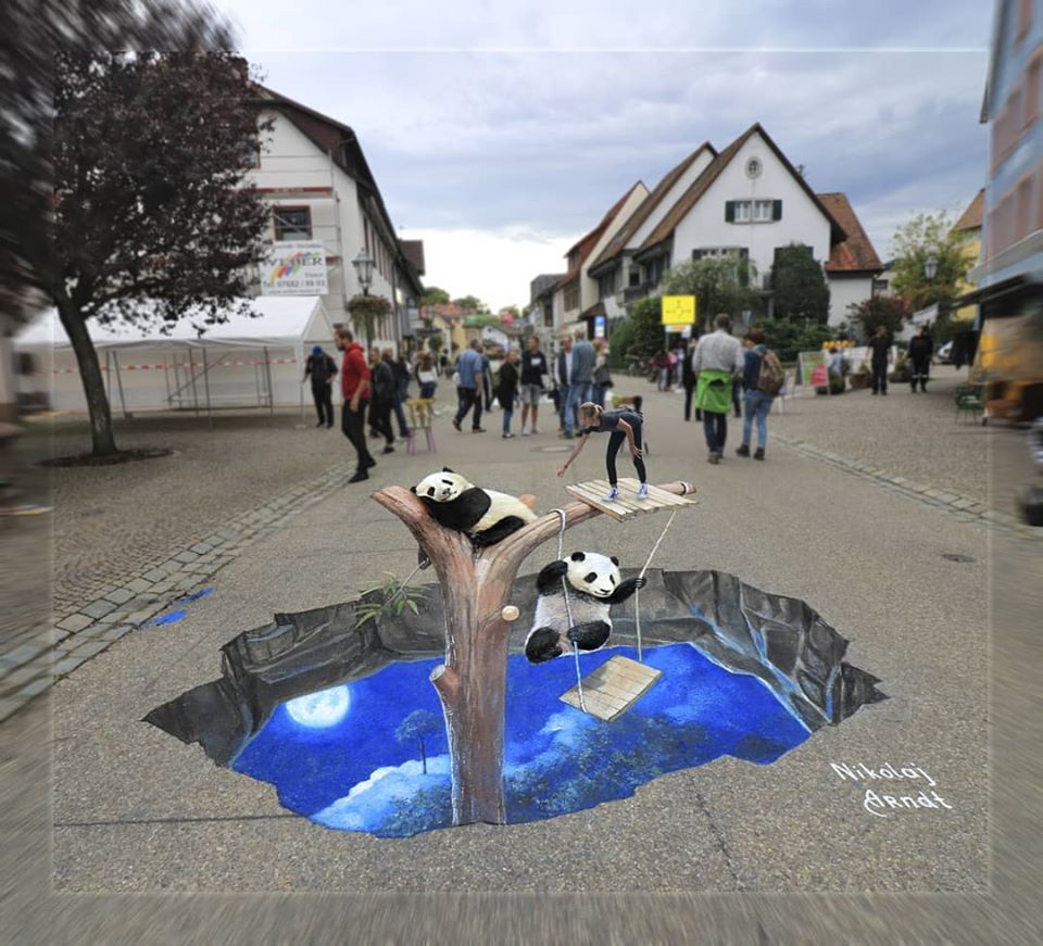 3d street art panda by nikolaj arndt