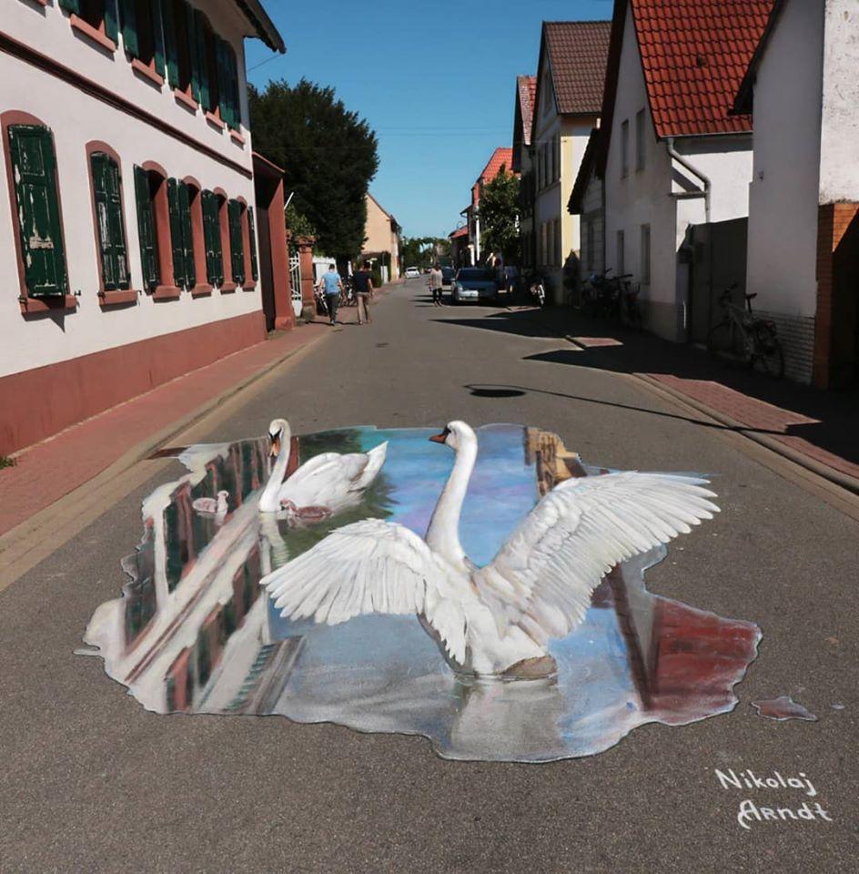 3d street art swan