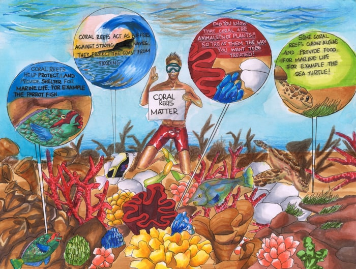 color pencil drawing coral reef importance by laie akana