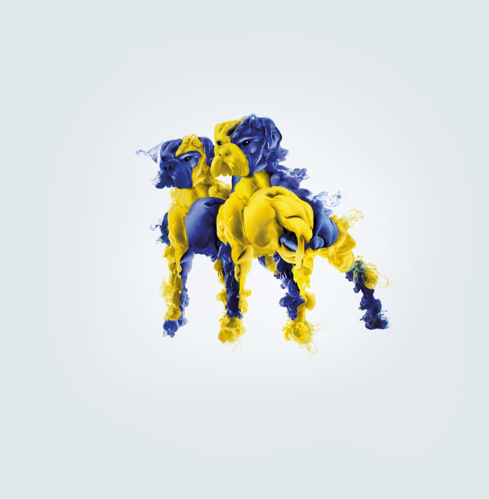 advertising photo manipulation italian football league mascot by b612studio