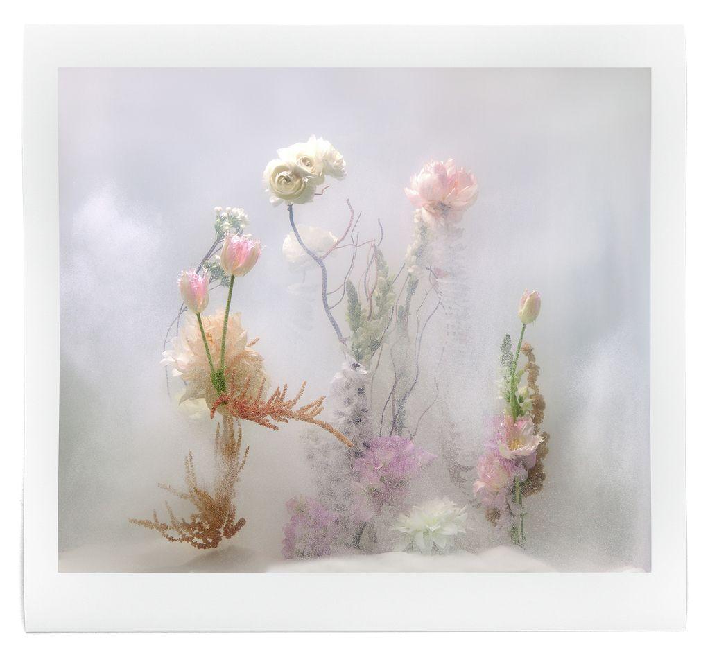 underwater ballet flower art installation by anne ten donkelaar