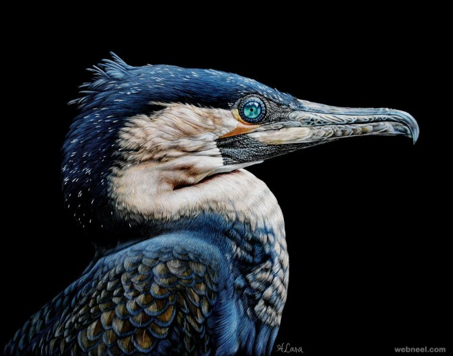 bird painting by heather