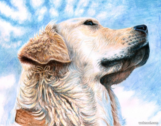 dog paintings by artsanddog