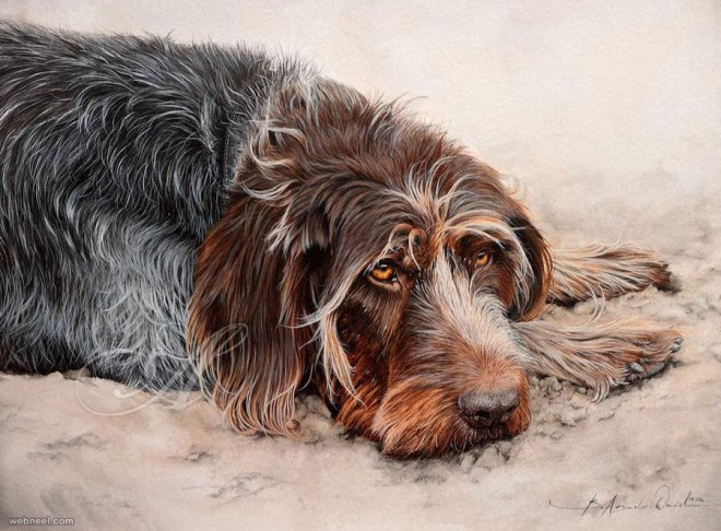 watercolor dog paintings by atelierarends