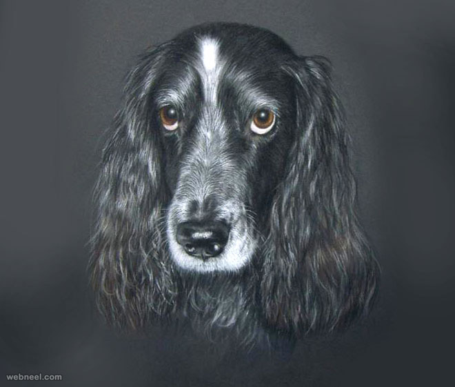 dog drawing by julyart