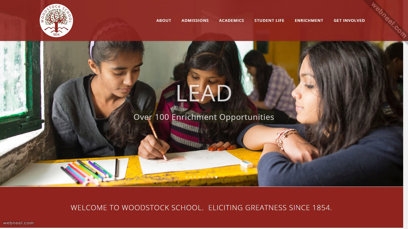 school website woodstock