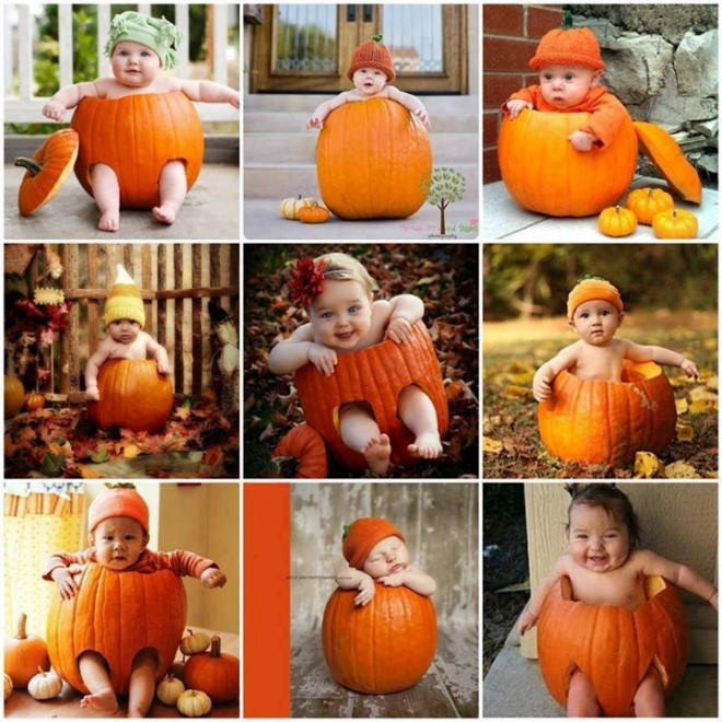 pumpkin baby photography ideas