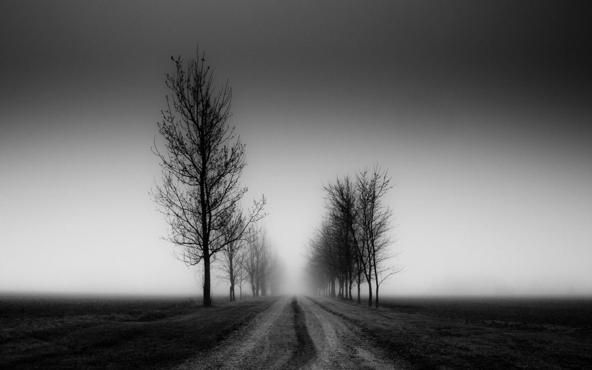 pathway black white photography