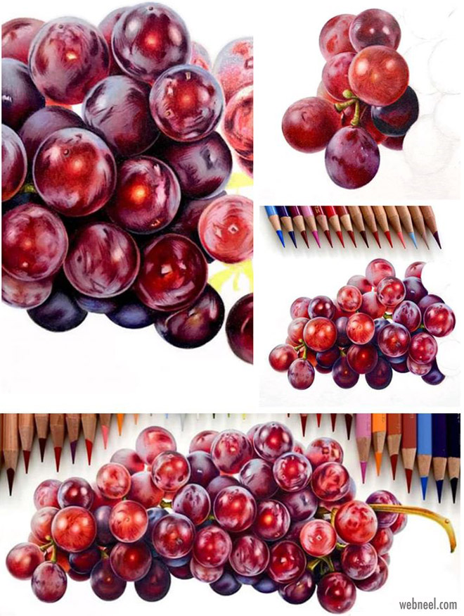 color pencil drawing grapes by dominique cates