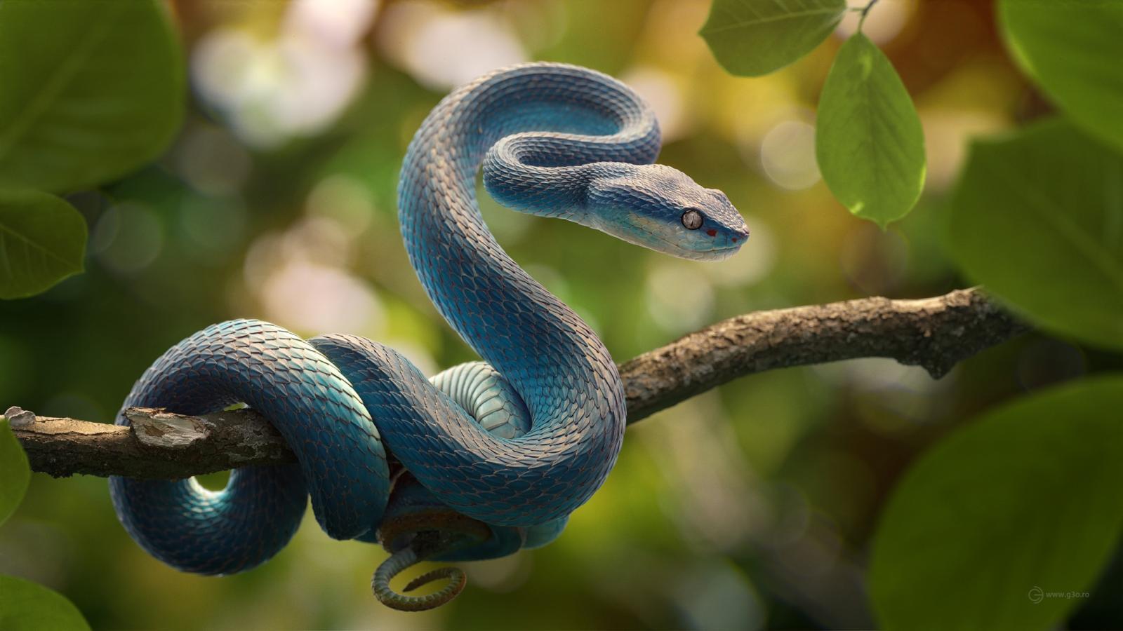 3d model snake by g3o