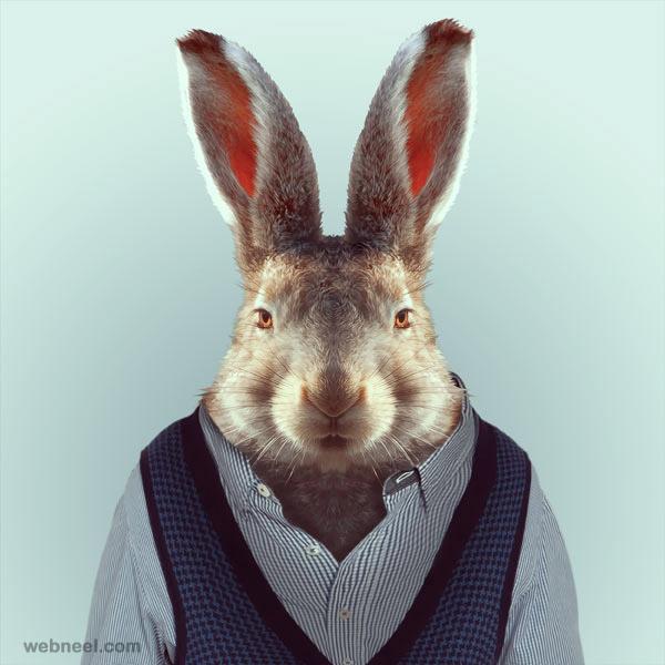animal portrait photography