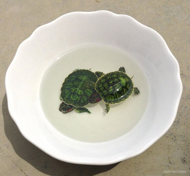 realistic turtles painting by keng lye