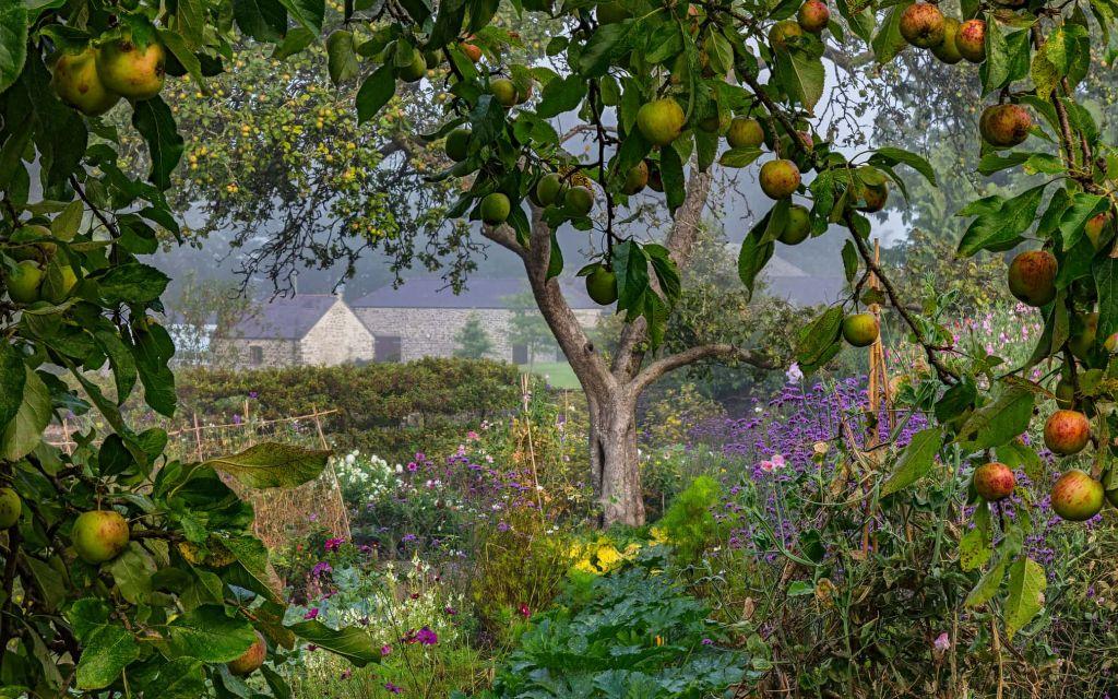 aberglasney gardens international garden photographer by nigel