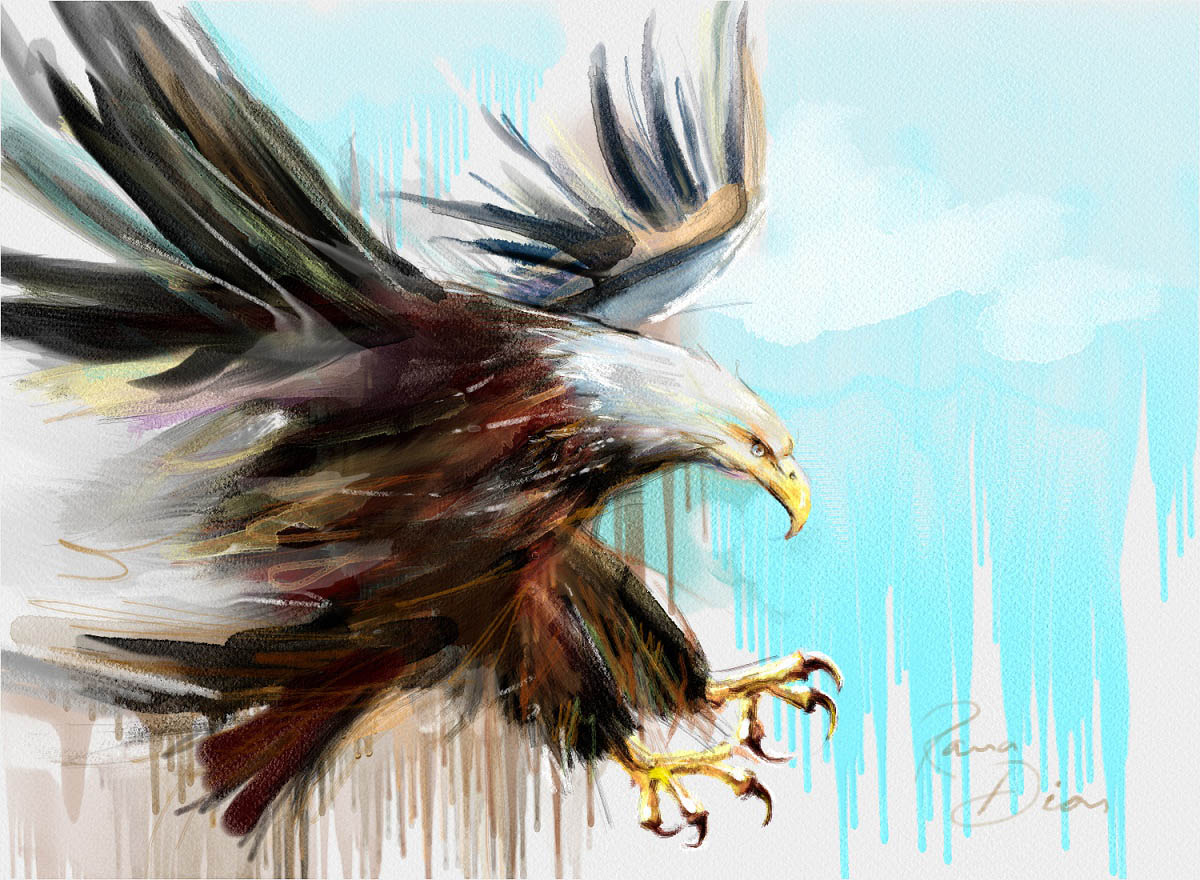 rebelle eagle painting by rana dias