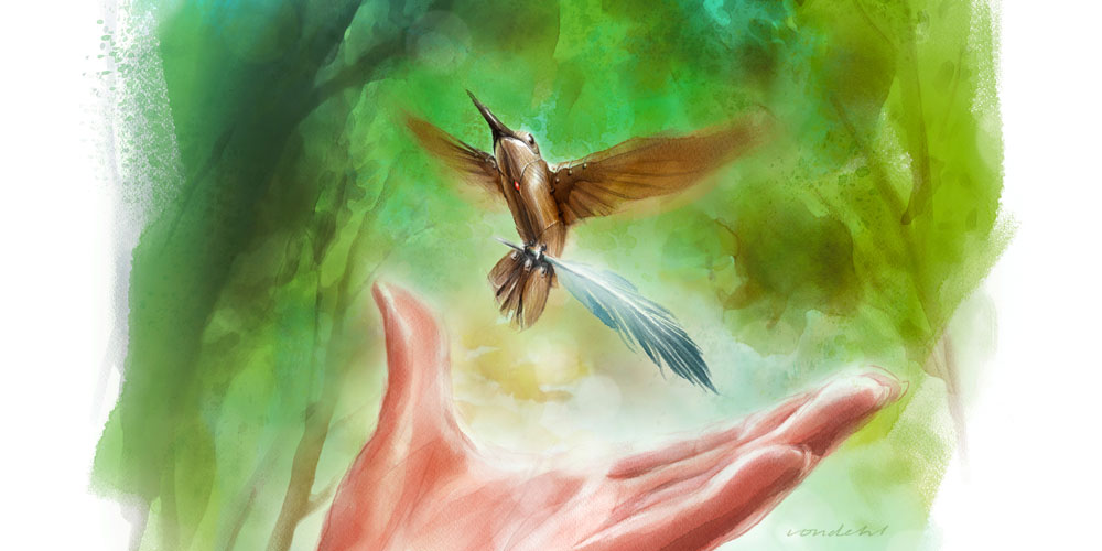 rebelle hummingbird painting by will von dohl