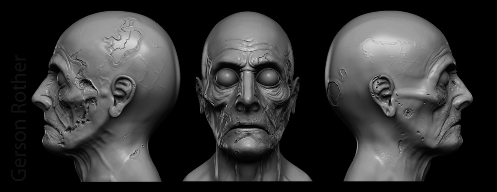 3d face model by gerson rother