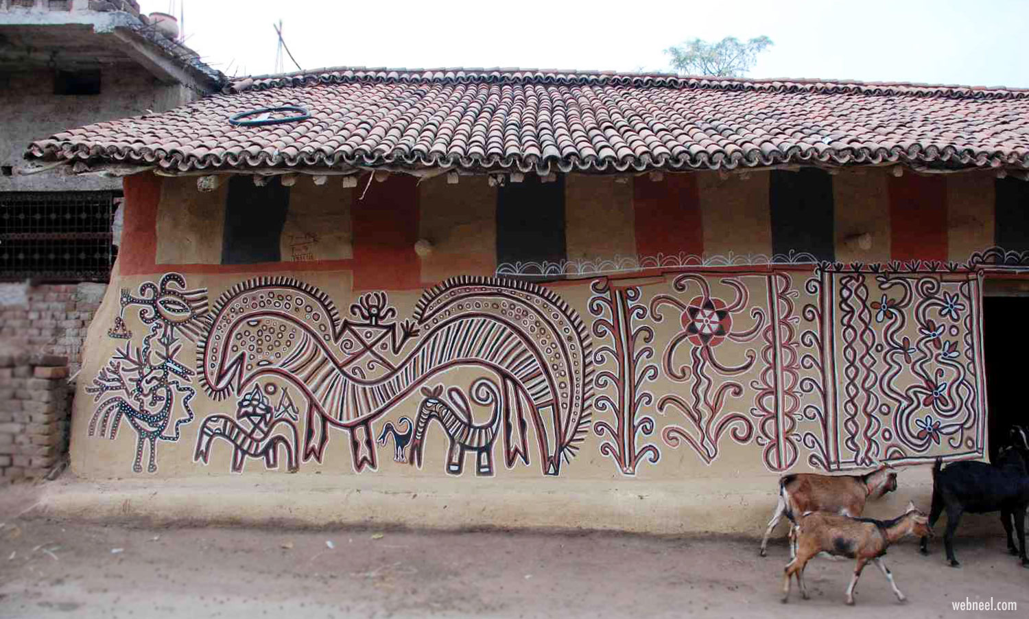 sohrai pintings on house walls tribal art jharkhand