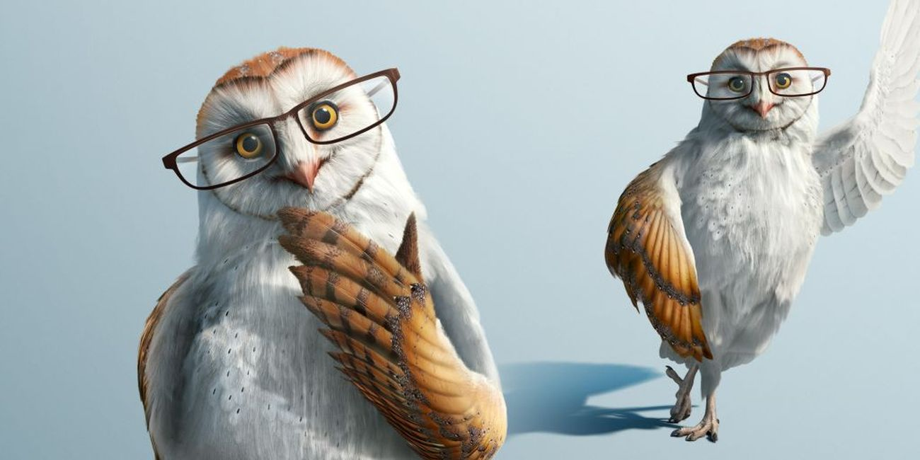 advertising photo manipulation owl bird by lime house creative