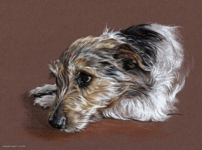 dog drawing by pastel utlah