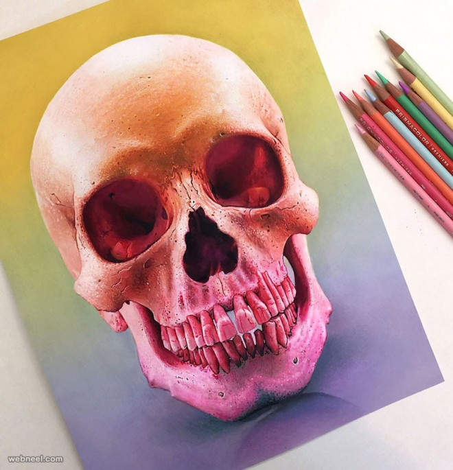 skull color pencil drawing by morgan davidson